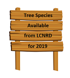 Tree Species Available from LCNRD for 2019